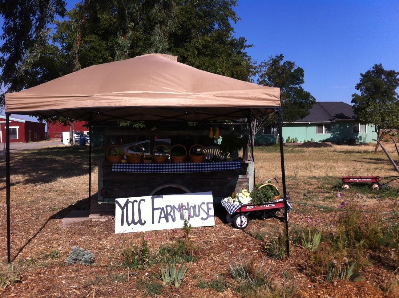 Farmer Market Stand
