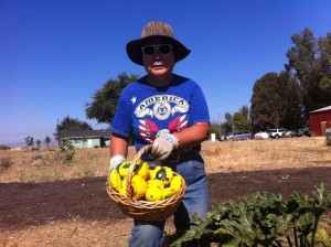 Kum Sun, a long-time F2M employee, showing a basket of summer squash she picked