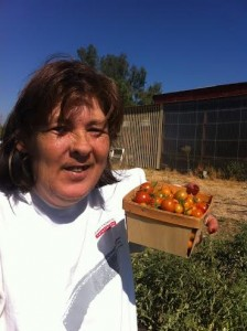 Cheryl Meade displays a basket of cherry tomatoes