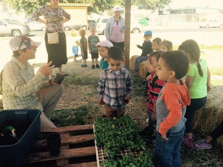 Preschoolers eagerly await their turn to pot up a basil seedling.