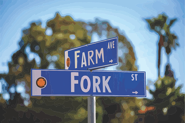 Intersection of Farm Avenue and Fork Street