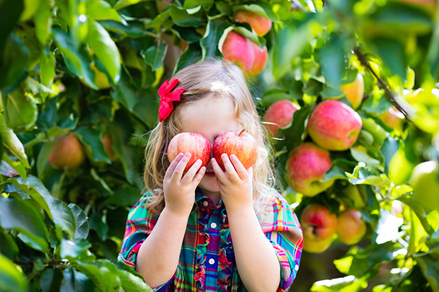 Girl covering eyes with apples
