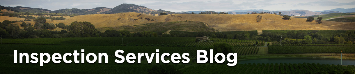 Inspection Services Blog